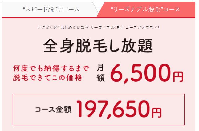 銀座カラー(新・全身脱毛)×リーズナブル脱毛コース